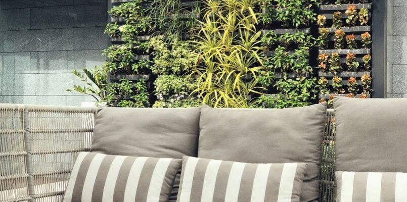 Things to keep in mind for a long-lasting Indoor wall garden